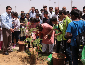Jun 14, 2019: Tree plantation drive at the IBA